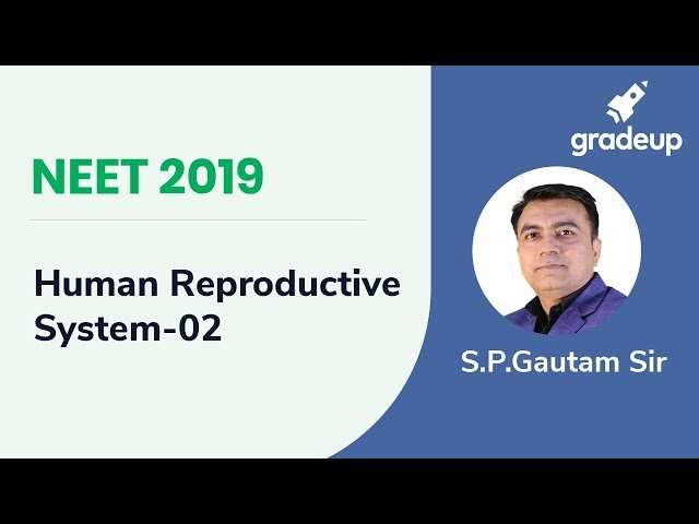 Boost your Rank NEET 2019 Human Reproductive System-02