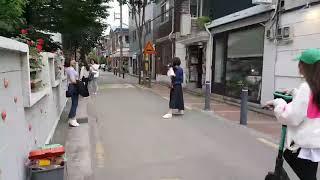 성수동 애견카페ㆍ반려동물용 친환경탈취제ㆍ애견탈취제ㆍ애견…