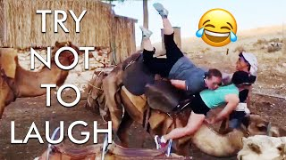 [2 HOUR] Try Not to Laugh Challenge! 😂 | Best Funny Fails of the Week | Funny Videos | AFV Live