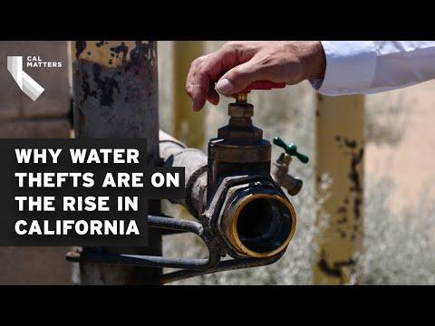 California drought, illegal marijuana farms lead to increase in water theft