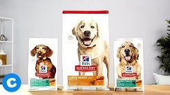 Hill's Science Diet Weight Management Dog Food | Chewy