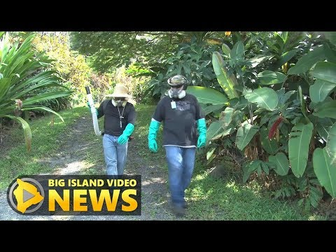Civil Defense Asked About Zika Cases (Oct. 13, 2017)