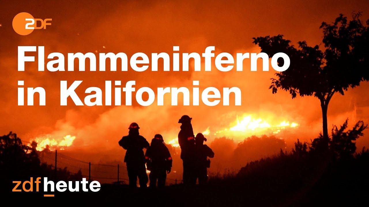 Apocalypse Now: Waldbrände Vorboten des Klimawandels?