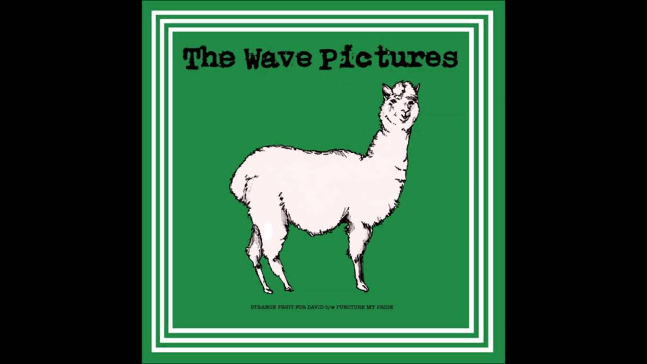 the-wave-pictures-strange-fruit-for-david-zuru