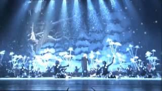 "Балетно-акробатическое шоу "" The Nutcracker"""