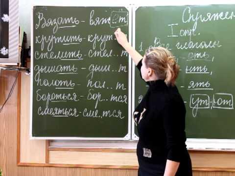 Омонимы 5 класс - Презентация 10090