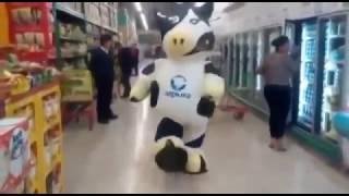 прикол чёткий . танец коровы