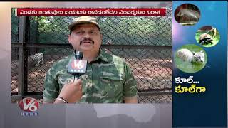 Hyderabad Zoo Makes Summer Relief Special Arrangements For All Animals | V6 News