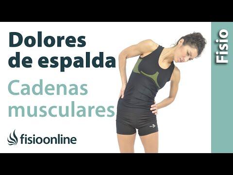 dolores-de-espalda-y-su-tratamiento-con-estiramientos-de-cadenas-musculares