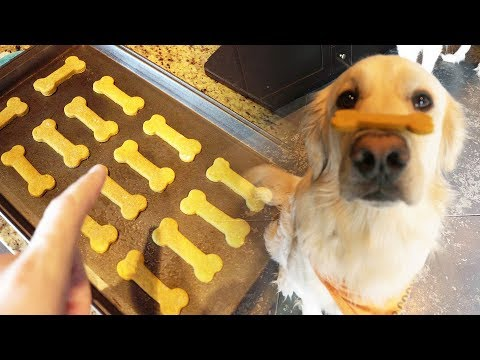 HEALTHY HOMEMADE DOG TREATS - SCS #113