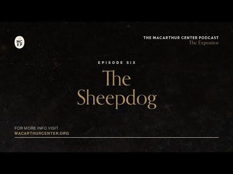 Download Episode 6: The Sheepdog