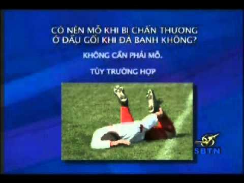 2010 july 28 Tin Tuc Y Khoa Tong Quat - BS Pham Dang Long Co phan 2