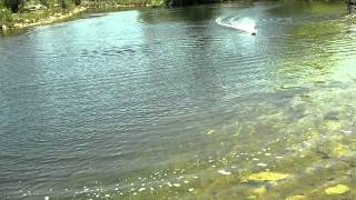 Pro Boat Impulse 26