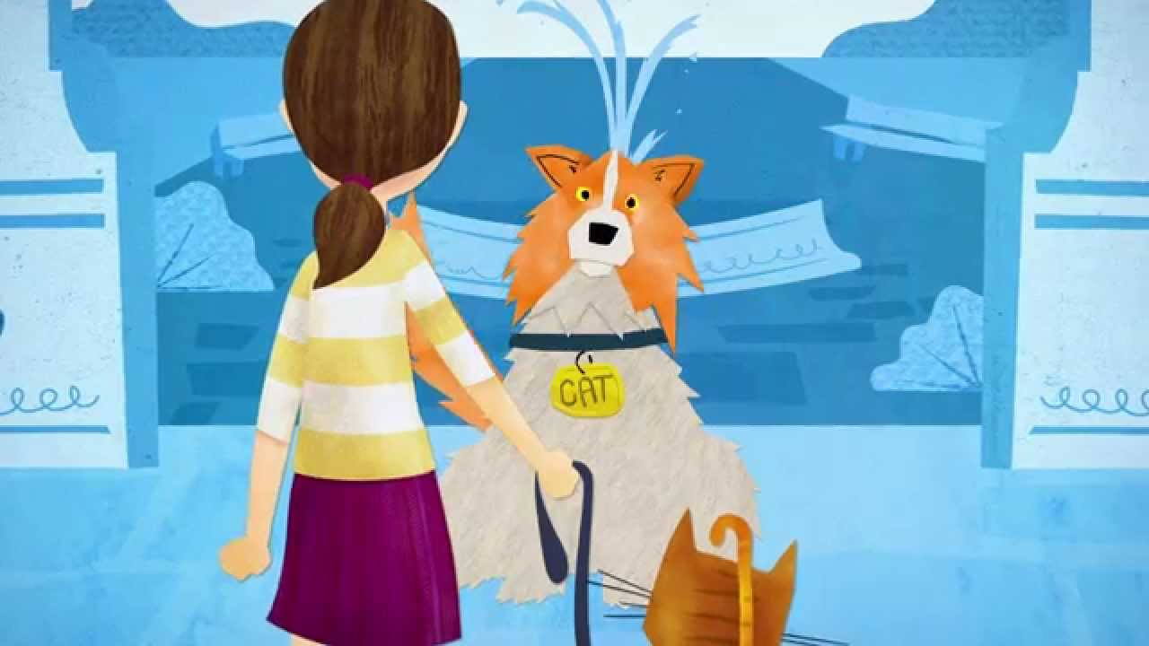 Walking My Cat Named Dog Youtbe