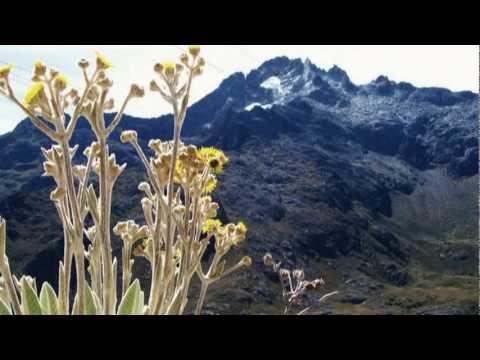 Venezuela: En donde Renacen los Sueños! Videos De Viajes