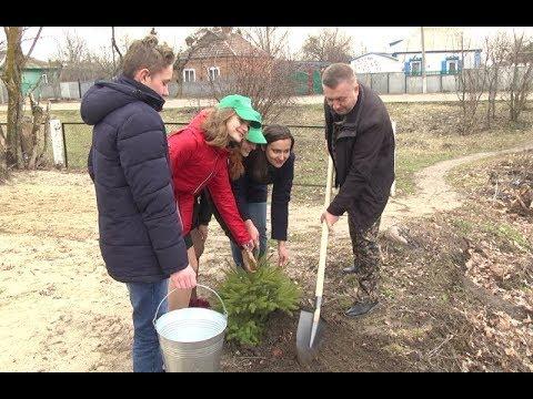 mistotvpoltava: Зіньків – акція до Міжнародного дня лісу