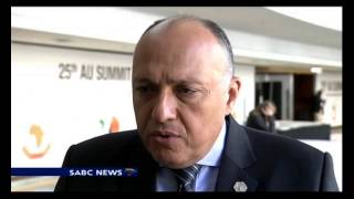 SA and Egypt develop strong cooperation : Egypt