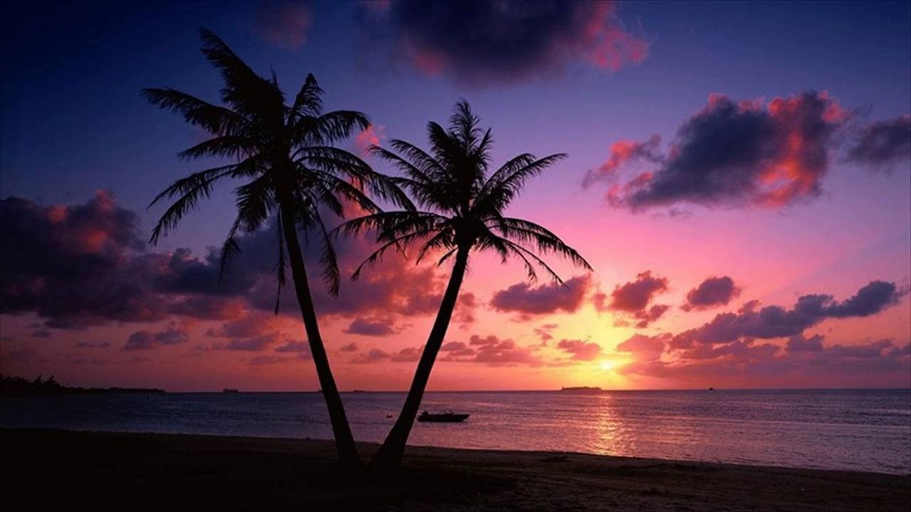 Beach Sunset Live Wallpaper ,Goa, India - YouTube