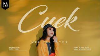 Download lagu Meilisa Cover (Cuek #GarisCinta - Rizky Febian)