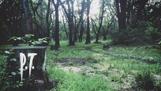 P.T. Demo - Silent Hills Ita [No comentary]