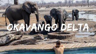 THIS is the Okavango Delta, Botswana | Travel video