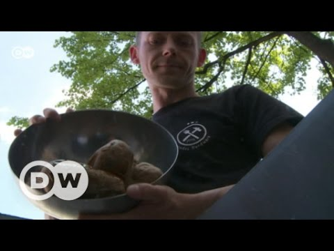 Danish app saves food from trash can | DW English
