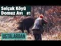 Selçuk Köyü Domuz Avı - 1.Bölüm Ustalardan - Yaban Tv Wild boar Hunting Turkey