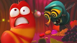 LARVA - DISCO PARTY | Cartoon Movie | Cartoons For Children | Larva Cartoon | LARVA Official
