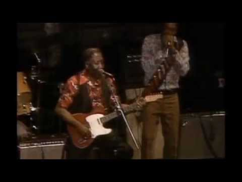 Muddy Waters ~ Live At Mr. Kelly's (Part 3 Electric Harmonica Chicago Blue 1971)