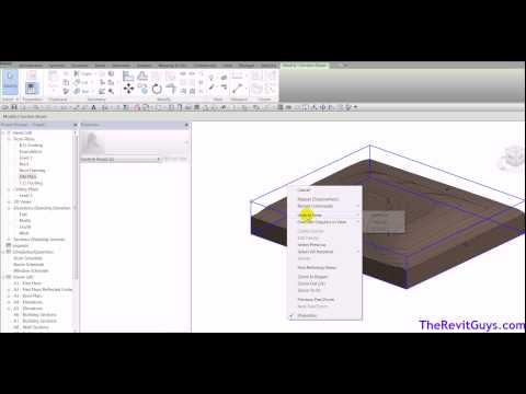 Revit Site Work - Grading Site Cut and Fill - CADtechSeminars.com