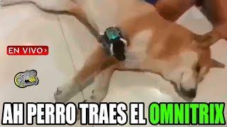 🔴 Ah Perro traes el Omnitrix !