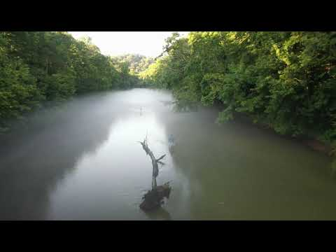 Fly Fishing Below Tim's Ford Dam On The Elk River, TN