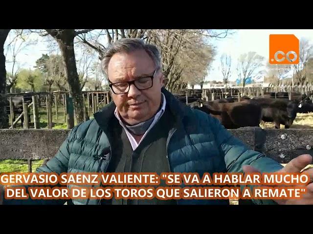 GERVASIO SAENZ VALIENTE 0