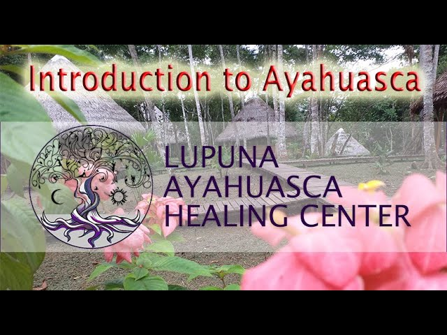 Ayahuasca Documentary: The Healing Aspect