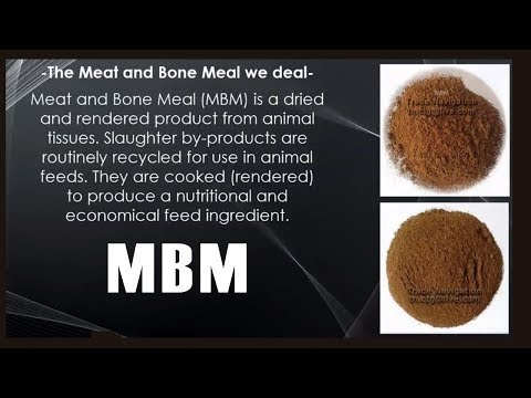 Animal Feed – MBM – Meat and Bone Meal..