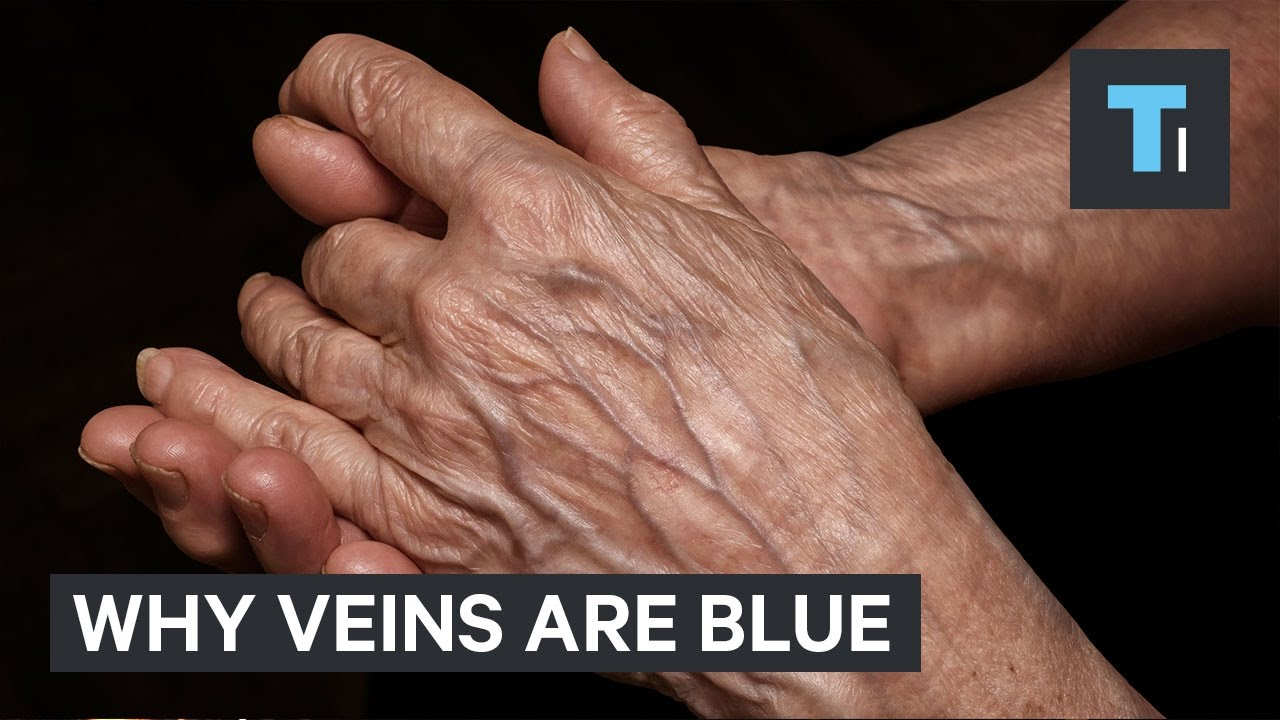 what color are veins
