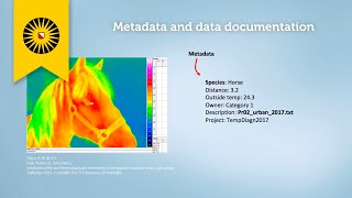 The ins and outs of metadata and data documentation thumbnail