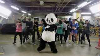 Download Gangnam Style Panda - PSY Gangnam Parody Mp3 and Videos
