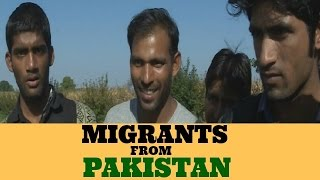 Pakistani Migrants at Croatia/Hungary border.