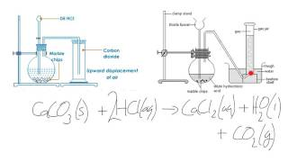 IGCSE Chemistry Lab Preparation of Carbon Dioxide