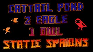 🦅🦉💸Cattail Pond 2 Eagle + 1 Owl Locations RDR2 Online Location Guide Red Dead Redemption 2 Online