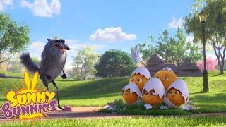 Cartoons For Children | SUNNY BUNNIES CHICKABUNNIES | NEW SEASON | Funny Cartoons For Children