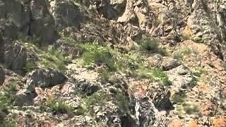 Долина реки Чуя, Алтайский край