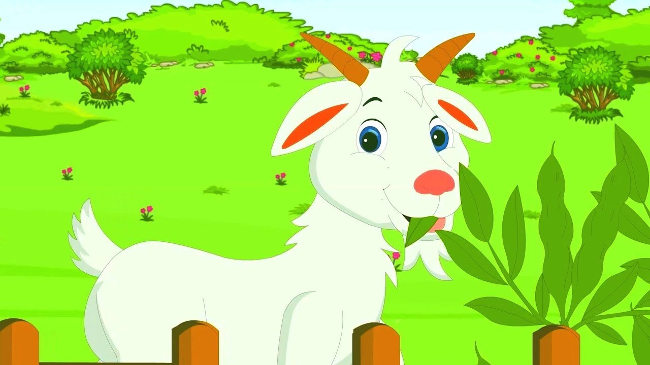23c8fe01cf8 The goat - A goat one time was shaking its tail | Children songs Greek