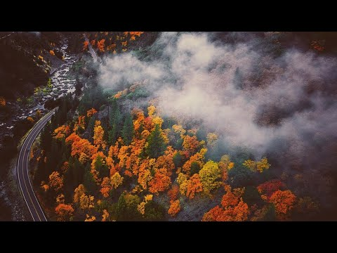 California Fall Colors: Plumas County 2017 Aerial Video