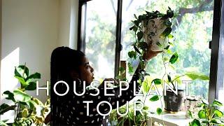 FALL 2019 HOUSEPLANT TOUR | 40+ PLANTS!!