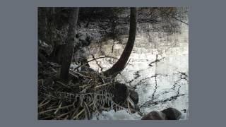 Jolanta Borusiewicz - Moja zamarznięta Kraina Czarów.mov