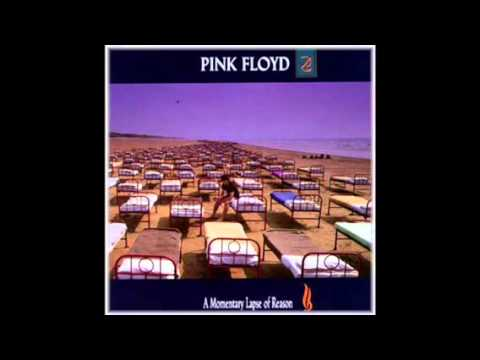 Pink Floyd  Terminal Frost