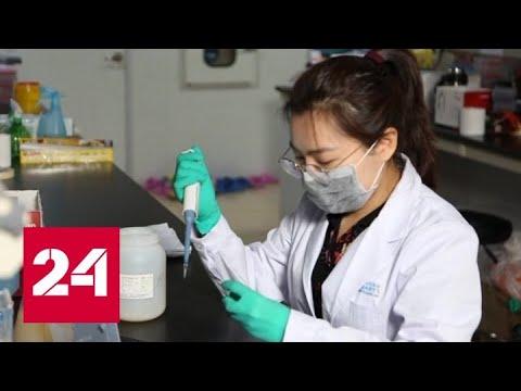 В Китае выявлены новые случаи заражения опасным вирусом - Россия 24