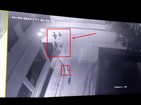 Shocking CCTV- Students running away from dog dies after being hit by car